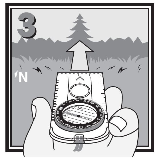 "3. Remove the compass from the map and hold it level in front of you with the Direction of Travel Arrow pointing straight ahead. Turn your body until the red end of the Needle is directly over the Orienting Arrow, pointing to the ""N"" on the dial."