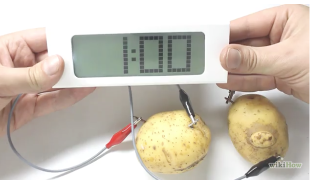 Make Your Own Potato Clock - At Home Science Project for Kids step 8